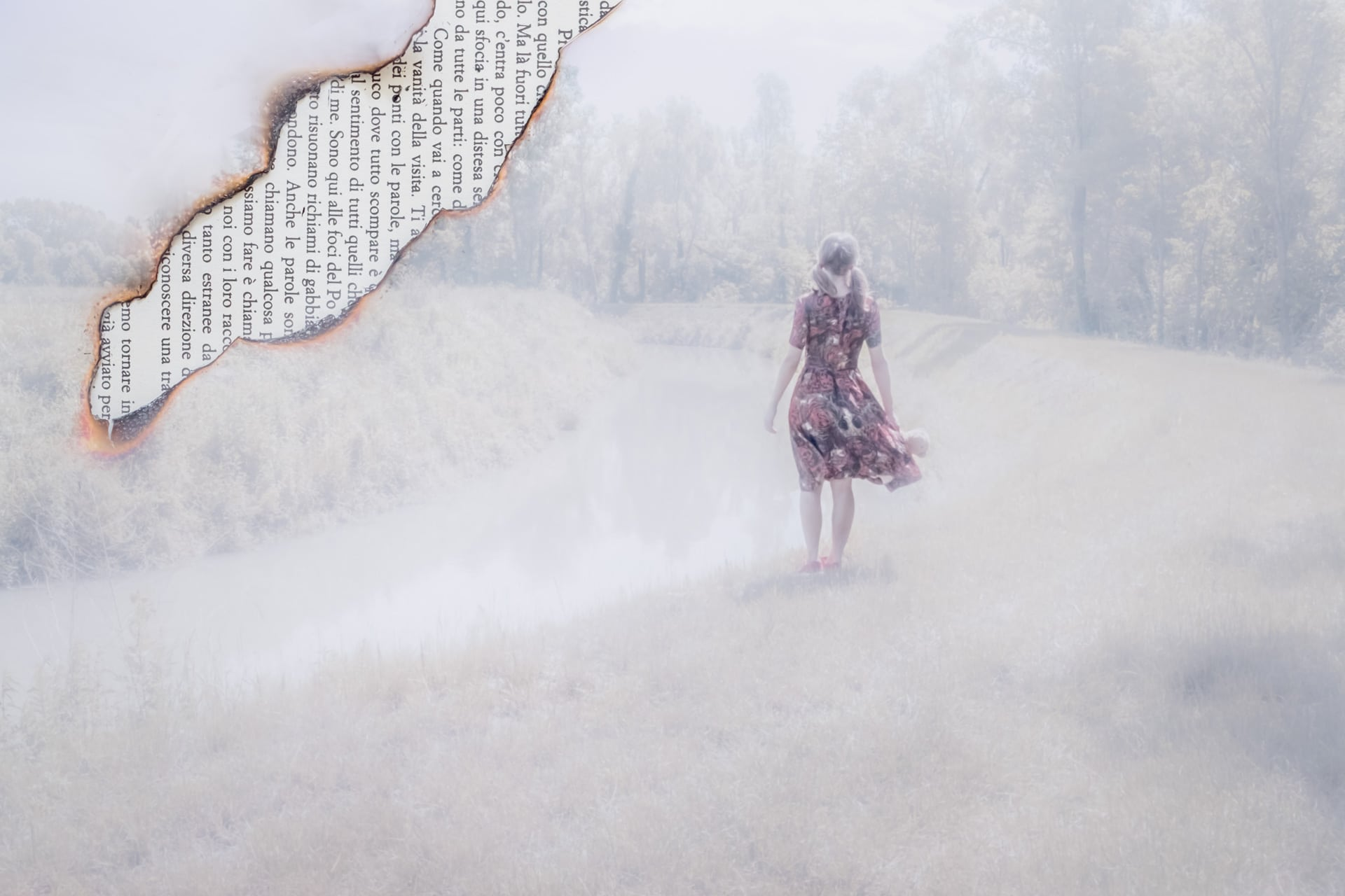 Fog-and-memories-5